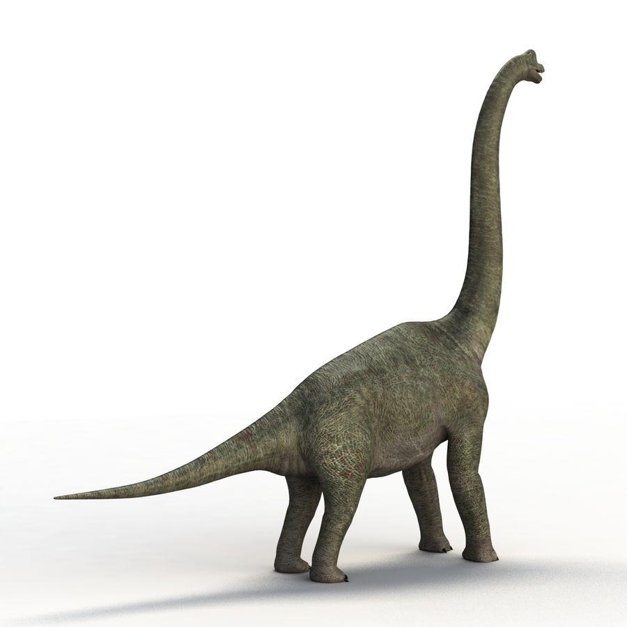 Braquiosaurio royalty-free modelo 3d - Preview no. 8
