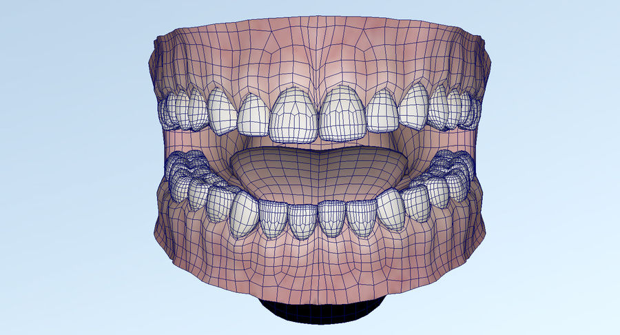 Mouth teeth gum realistic dental royalty-free 3d model - Preview no. 34