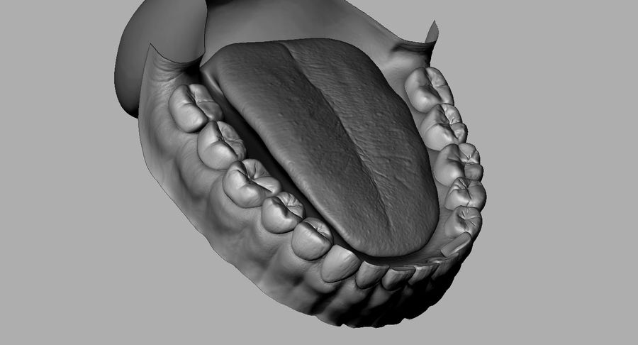 Mouth teeth gum realistic dental royalty-free 3d model - Preview no. 20