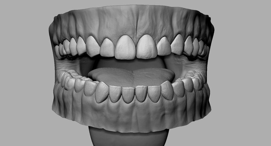 Mouth teeth gum realistic dental royalty-free 3d model - Preview no. 10