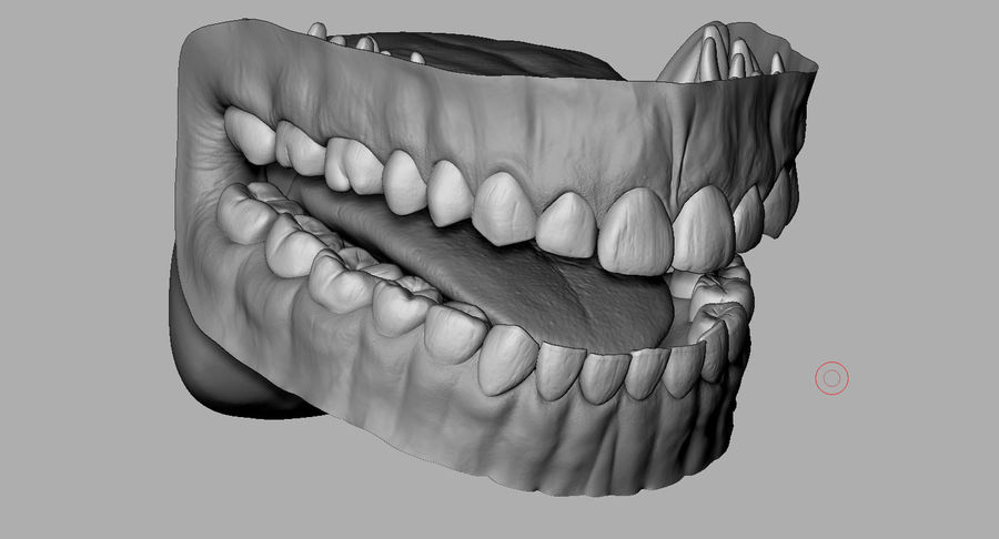 Mouth teeth gum realistic dental royalty-free 3d model - Preview no. 13