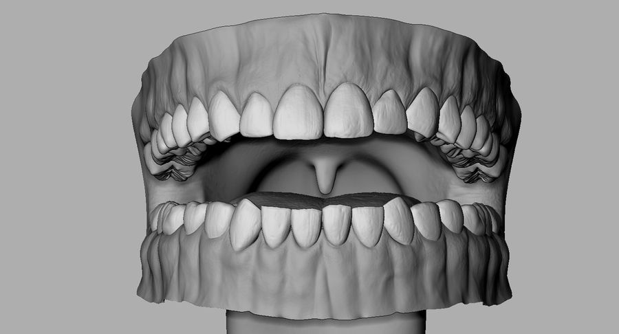 Mouth teeth gum realistic dental royalty-free 3d model - Preview no. 12