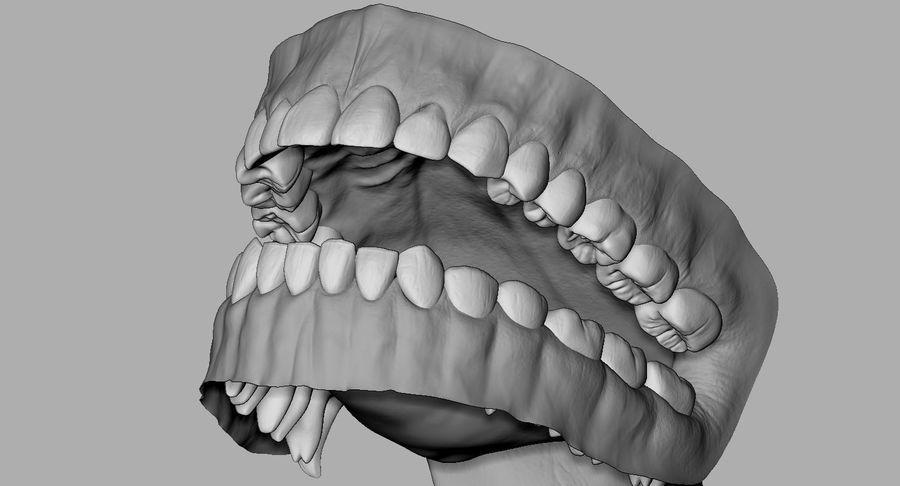 Mouth teeth gum realistic dental royalty-free 3d model - Preview no. 14