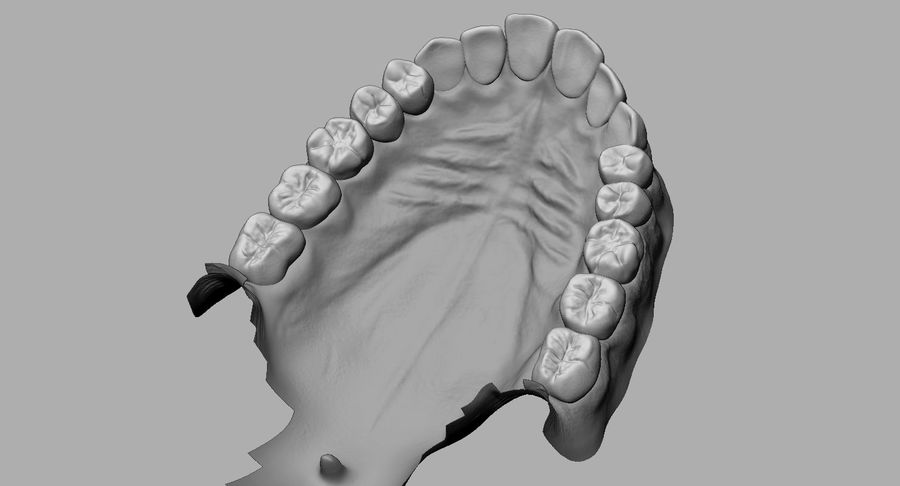 Mouth teeth gum realistic dental royalty-free 3d model - Preview no. 15