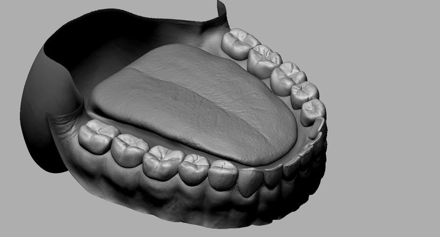 Mouth teeth gum realistic dental royalty-free 3d model - Preview no. 18