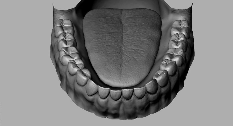 Mouth teeth gum realistic dental royalty-free 3d model - Preview no. 21