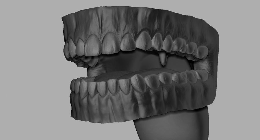 Mouth teeth gum realistic dental royalty-free 3d model - Preview no. 23