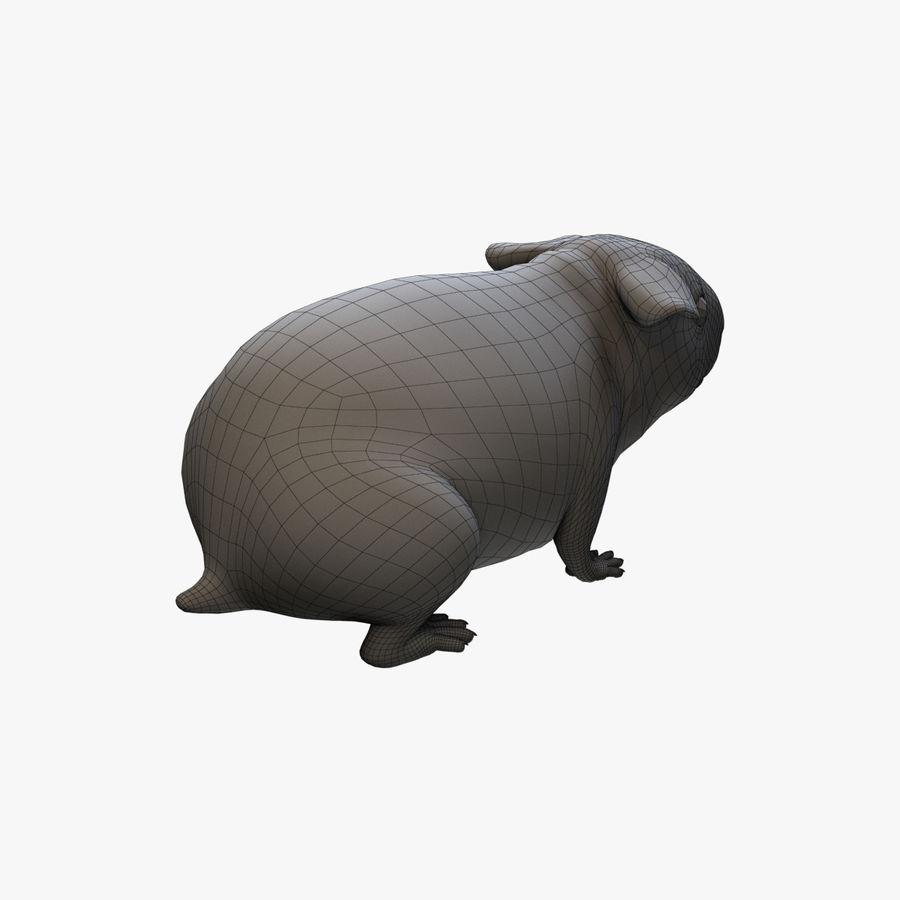 Meerschweinchen - Licht (FUR) royalty-free 3d model - Preview no. 9