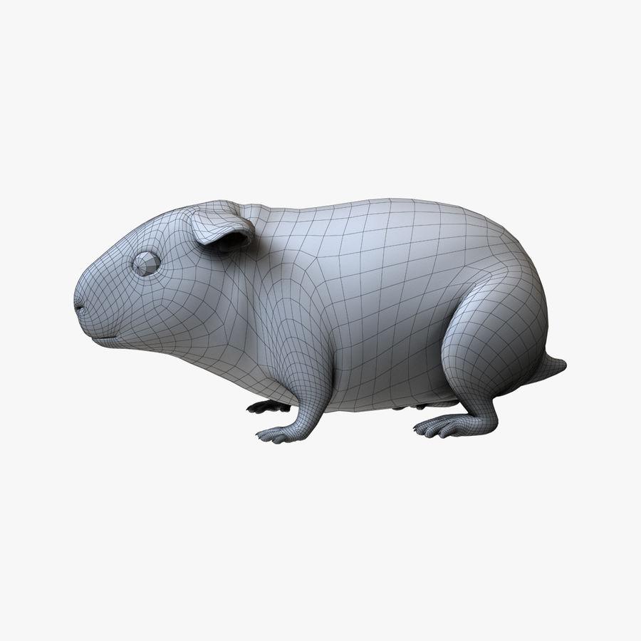 Meerschweinchen - Licht (FUR) royalty-free 3d model - Preview no. 6