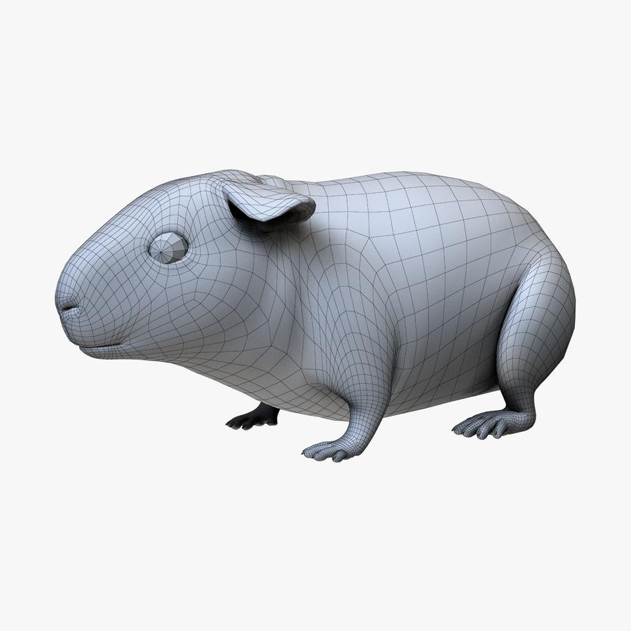 Meerschweinchen - Licht (FUR) royalty-free 3d model - Preview no. 3