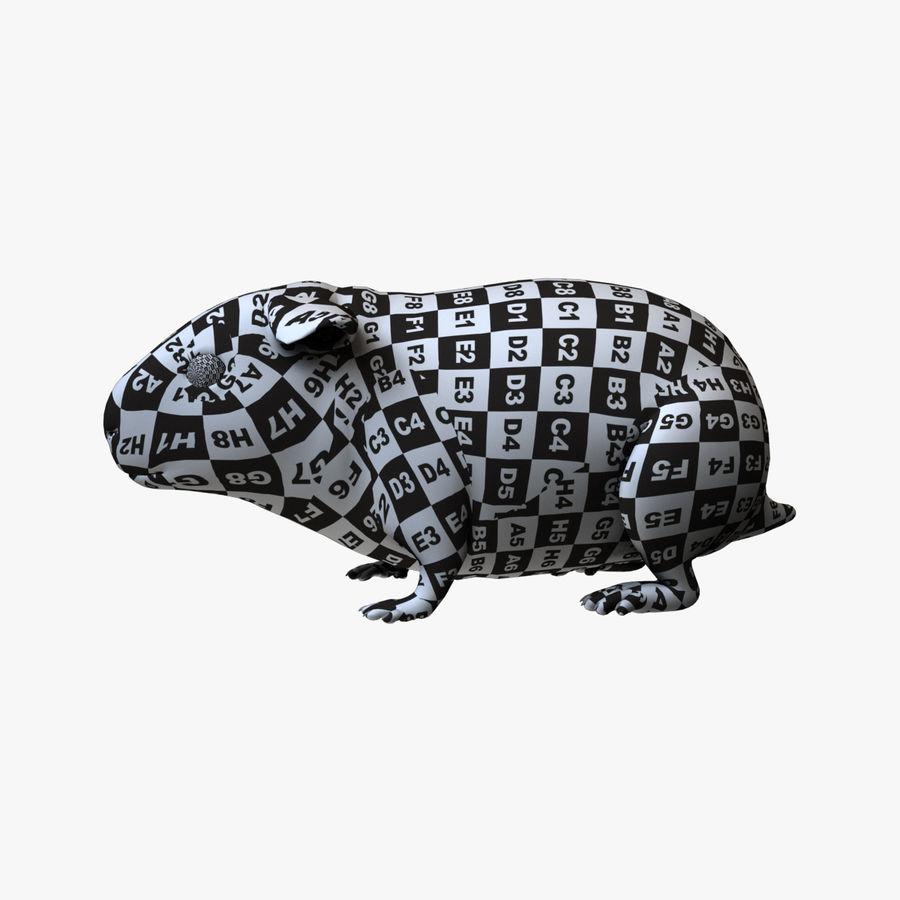 Meerschweinchen - Licht (FUR) royalty-free 3d model - Preview no. 5