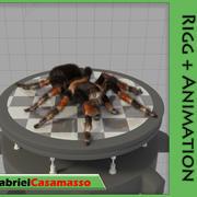 Tarantula 3d model