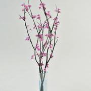 꽃병에 sacura 지점 3d model