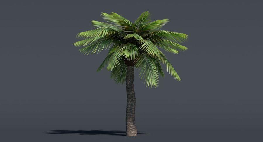 Palma Low Poly royalty-free 3d model - Preview no. 3