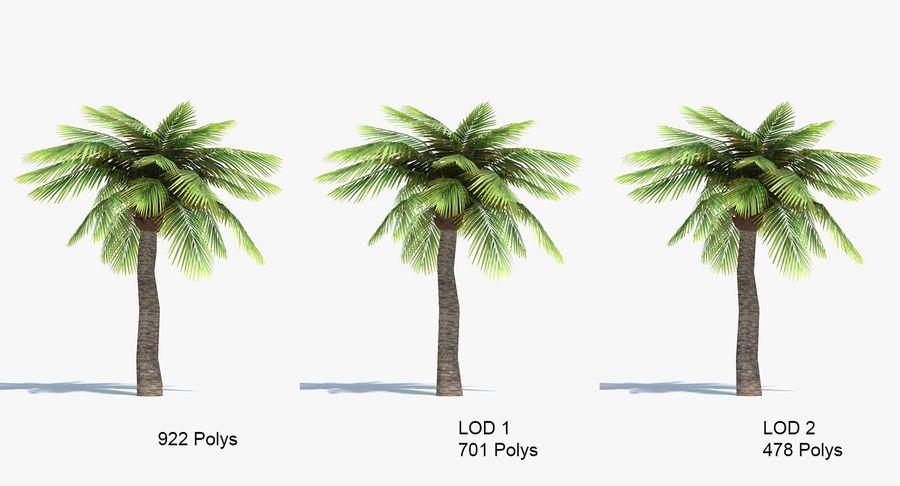 Palma Low Poly royalty-free 3d model - Preview no. 4