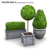 화분에 심은 식물 번들 4 3d model