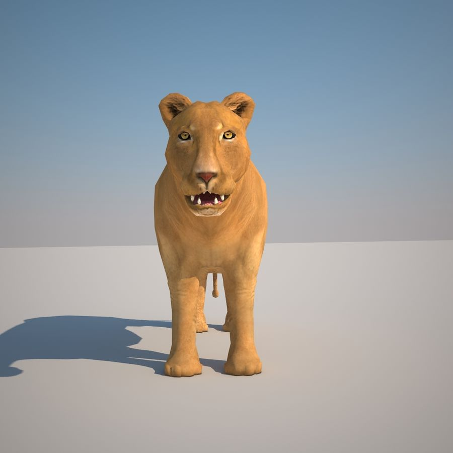Safari animals collection royalty-free 3d model - Preview no. 37