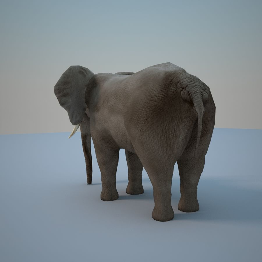 Safari animals collection royalty-free 3d model - Preview no. 20
