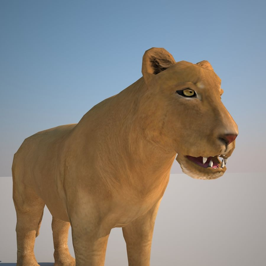 Safari animals collection royalty-free 3d model - Preview no. 38