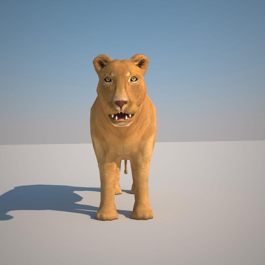 Safari djur samling royalty-free 3d model - Preview no. 37
