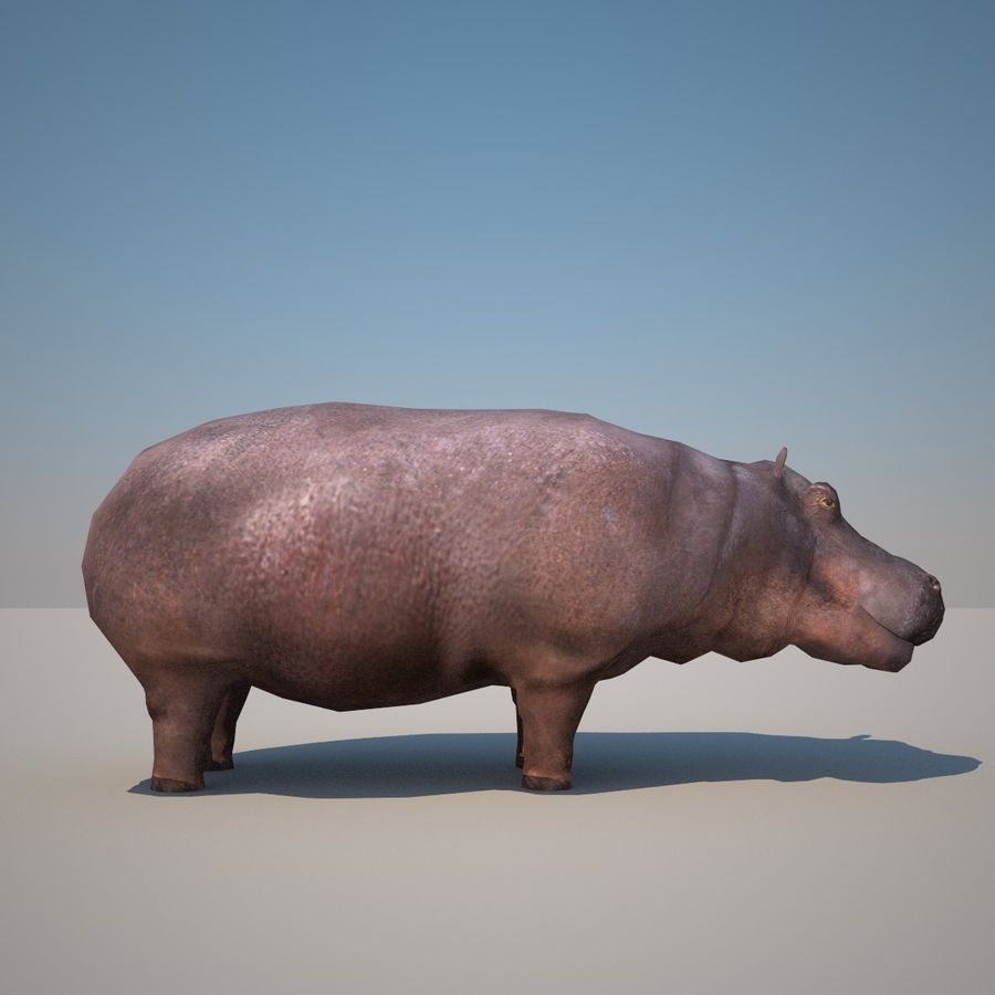 Safari animals collection royalty-free 3d model - Preview no. 26