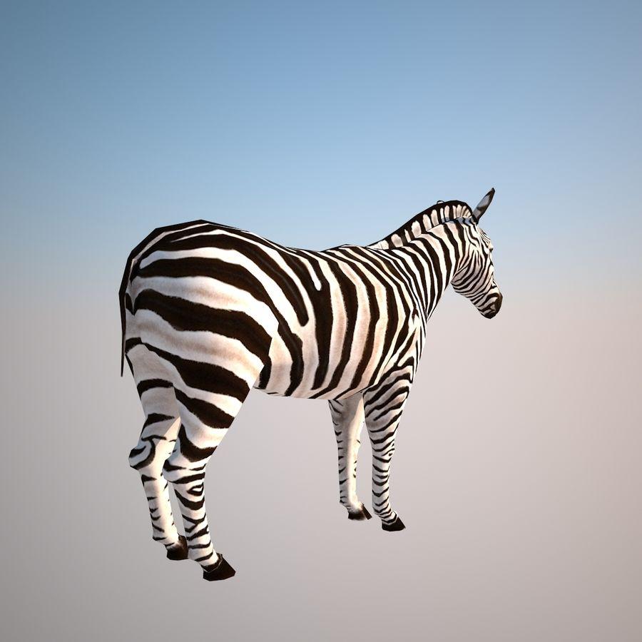 Safari djur samling royalty-free 3d model - Preview no. 5