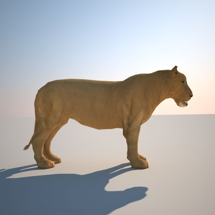Safari animals collection royalty-free 3d model - Preview no. 34