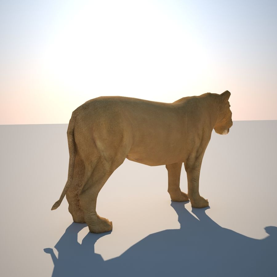 Safari animals collection royalty-free 3d model - Preview no. 35