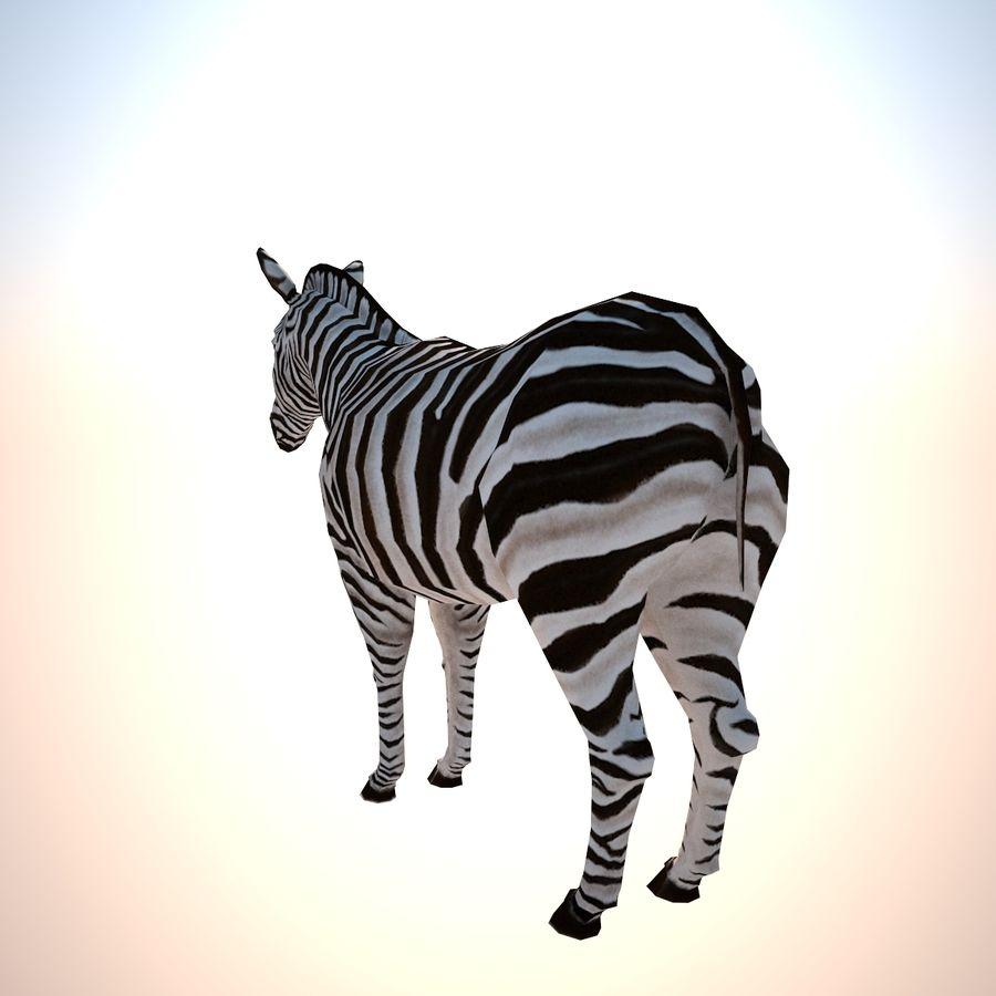 Safari djur samling royalty-free 3d model - Preview no. 4