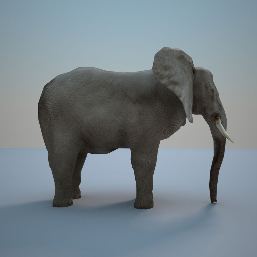 Safari animals collection royalty-free 3d model - Preview no. 18