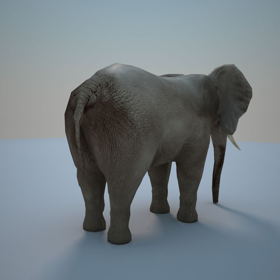 Safari animals collection royalty-free 3d model - Preview no. 19