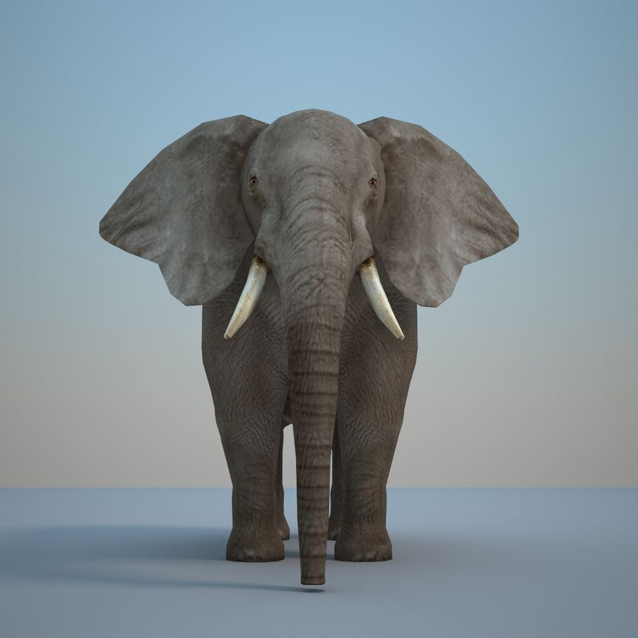 Safari animals collection royalty-free 3d model - Preview no. 21