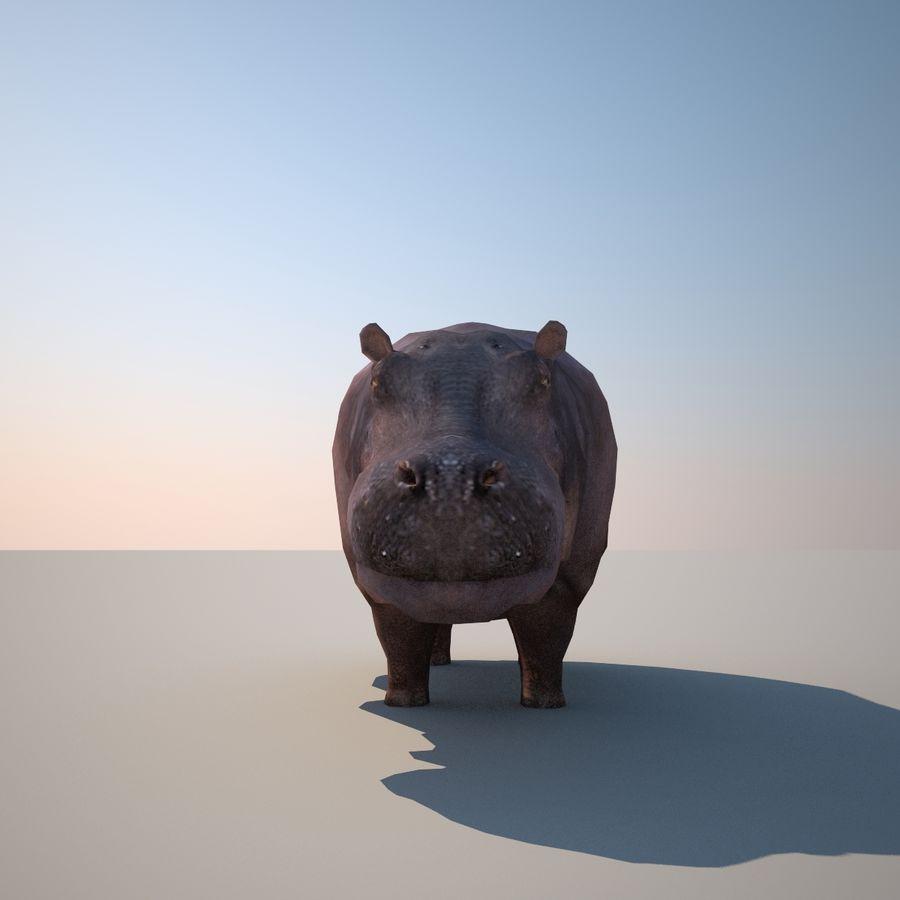 Safari djur samling royalty-free 3d model - Preview no. 29