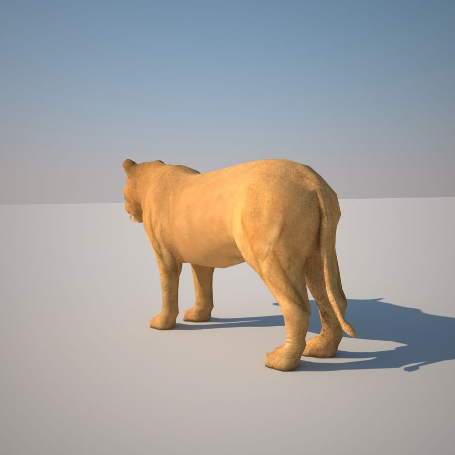 Safari animals collection royalty-free 3d model - Preview no. 36