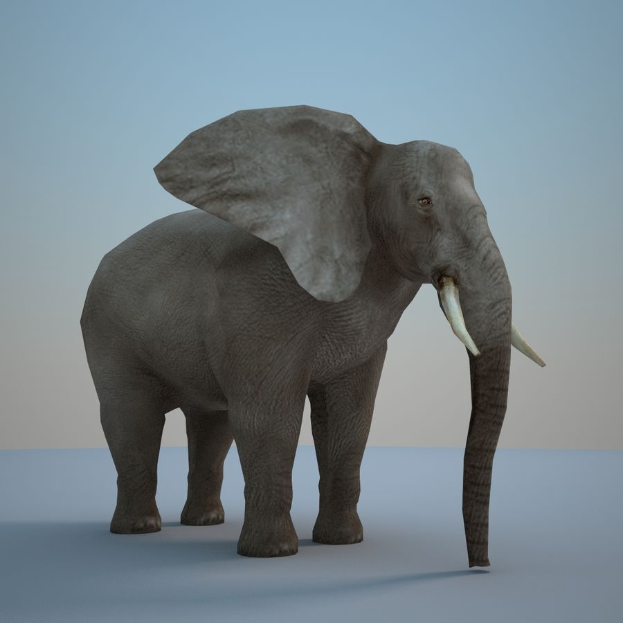 Safari animals collection royalty-free 3d model - Preview no. 22