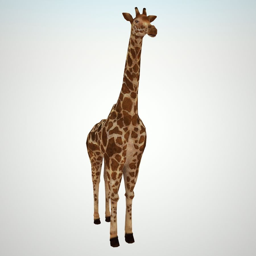Safari animals collection royalty-free 3d model - Preview no. 13