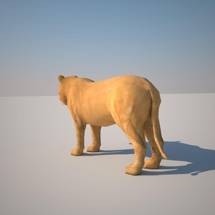 Safari djur samling royalty-free 3d model - Preview no. 36