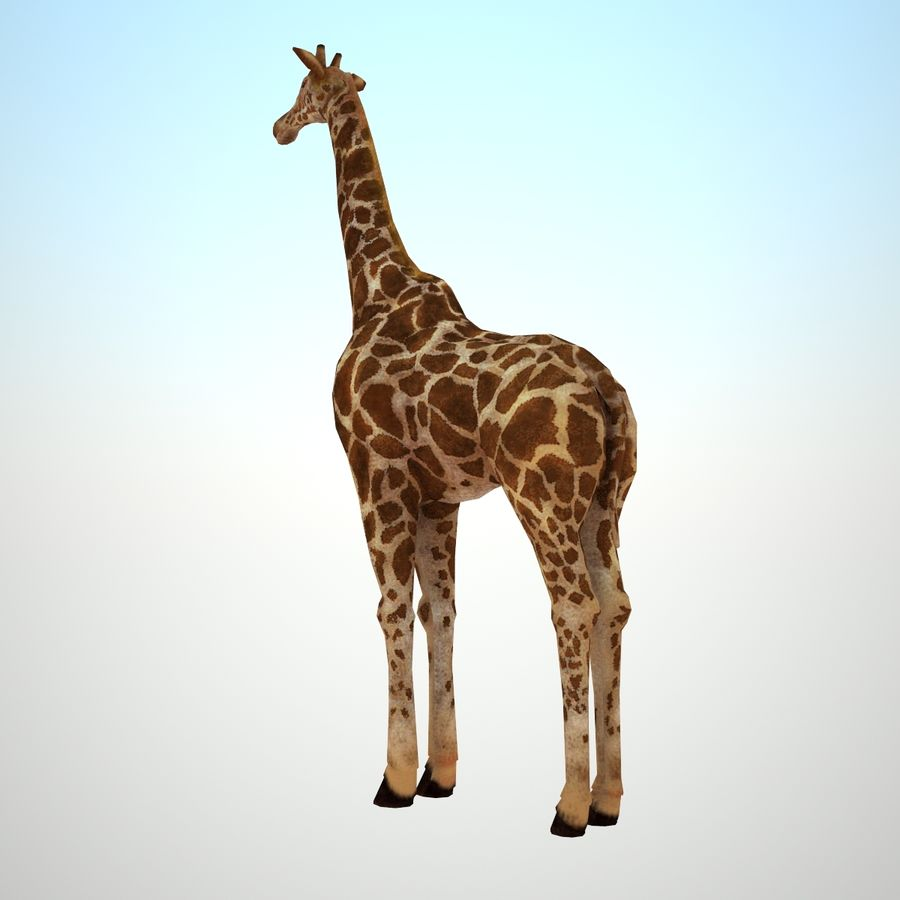 Safari animals collection royalty-free 3d model - Preview no. 12