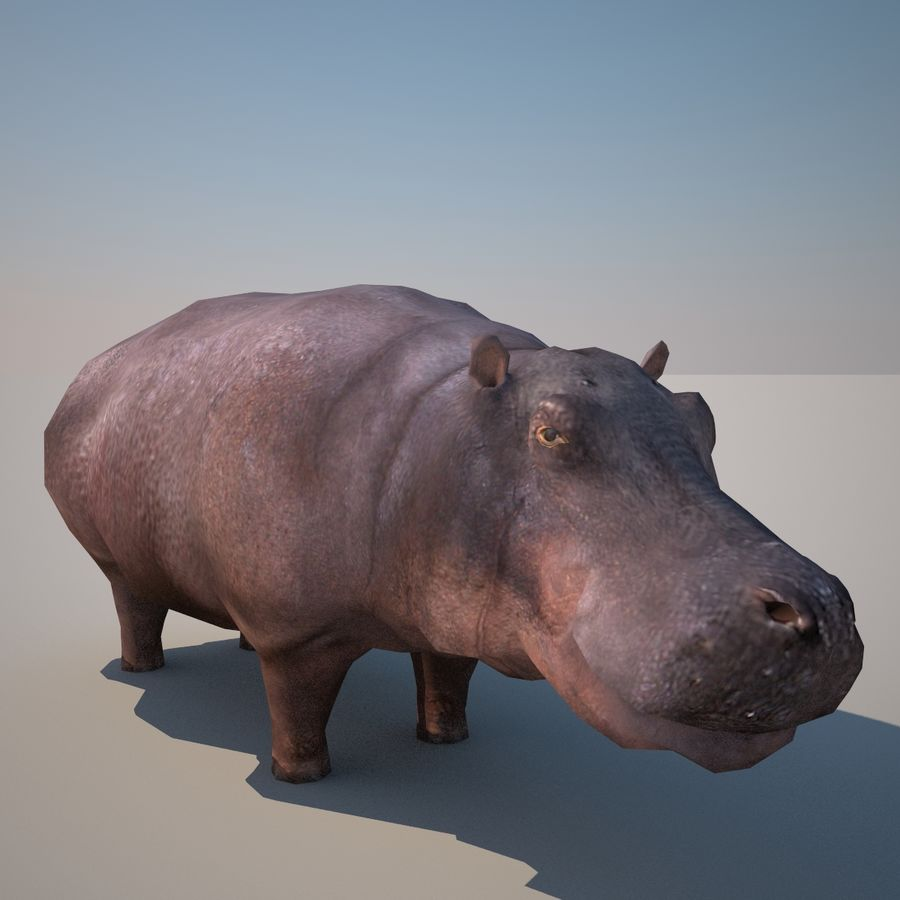 Safari animals collection royalty-free 3d model - Preview no. 30