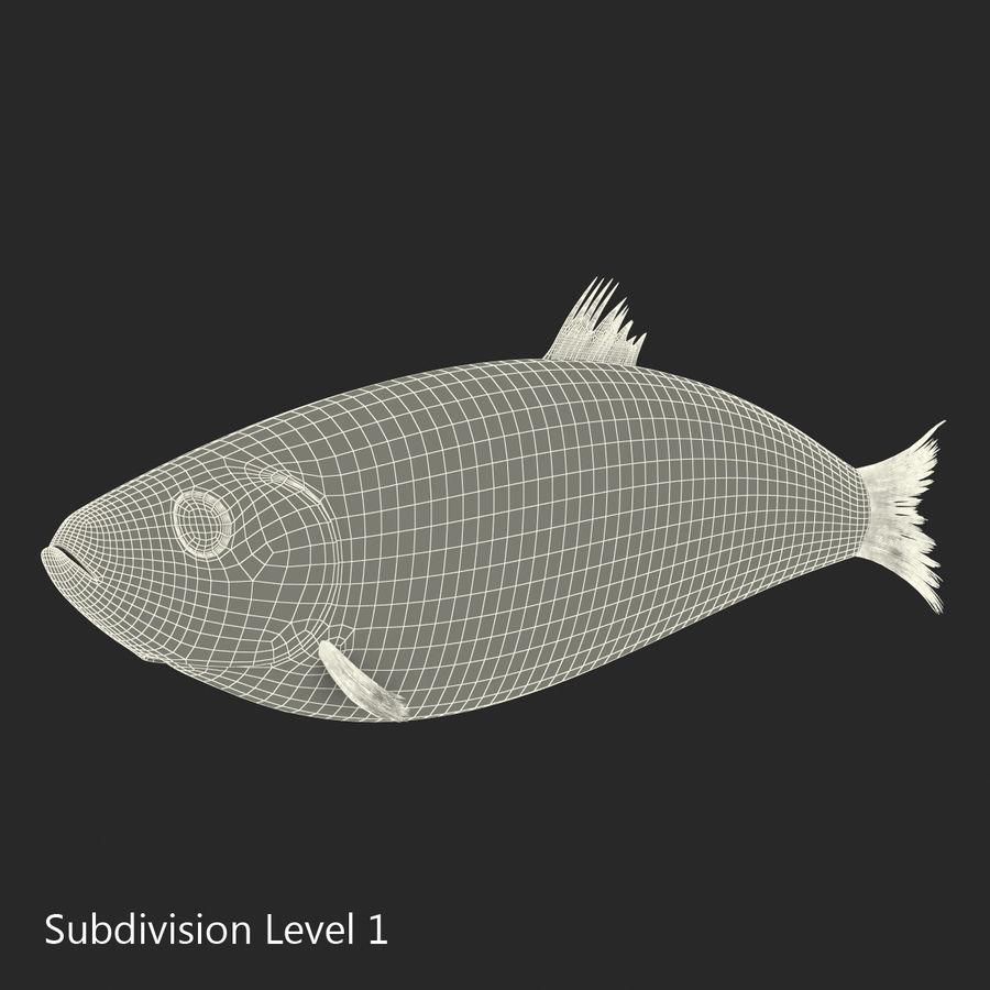 鲱鱼鱼索具 royalty-free 3d model - Preview no. 20