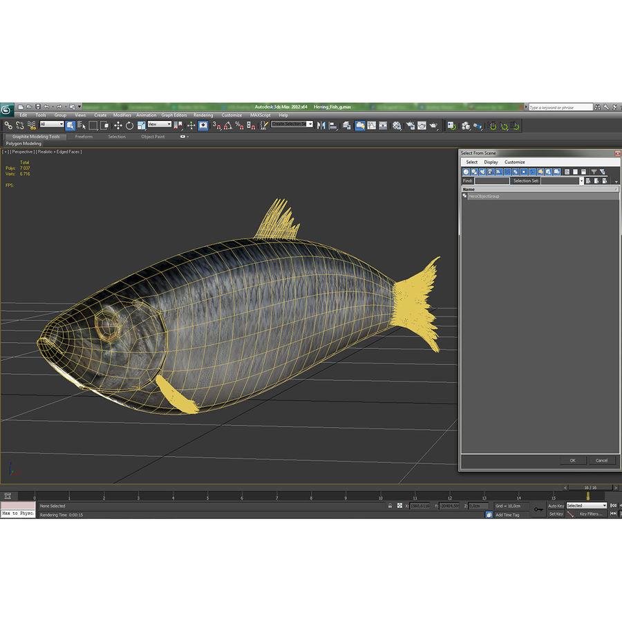 鲱鱼鱼索具 royalty-free 3d model - Preview no. 23