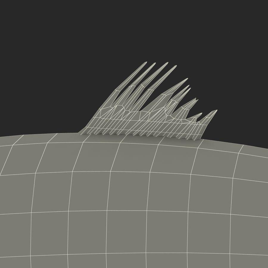 鲱鱼鱼索具 royalty-free 3d model - Preview no. 30