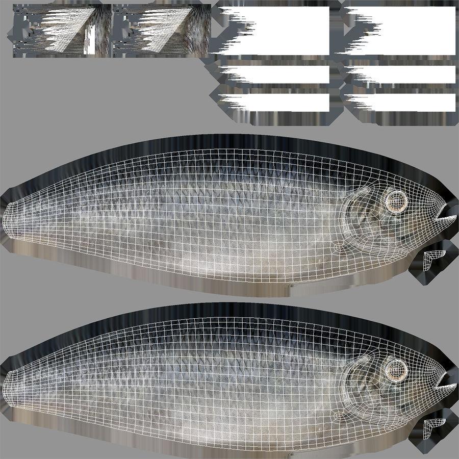 鲱鱼鱼索具 royalty-free 3d model - Preview no. 21