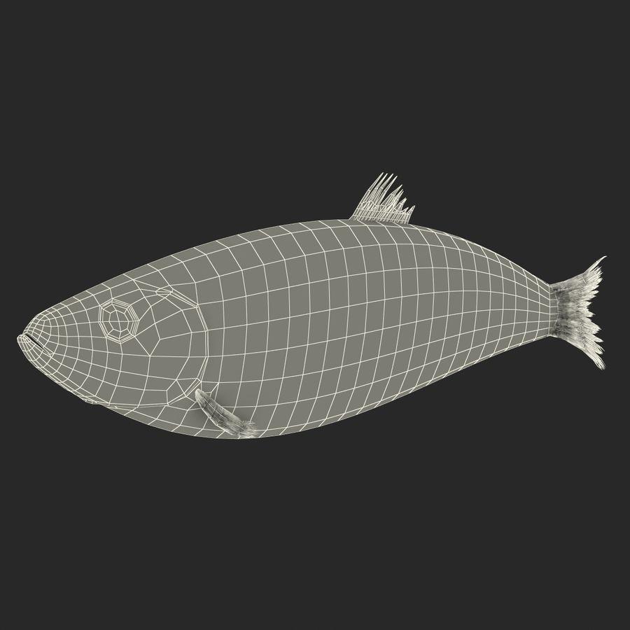 鲱鱼鱼索具 royalty-free 3d model - Preview no. 24