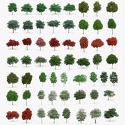 60 kolekcji drzew 3d model