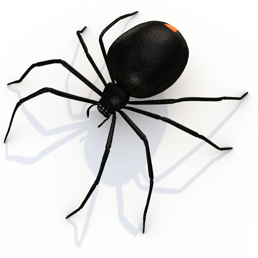 black widow royalty-free 3d model - Preview no. 2