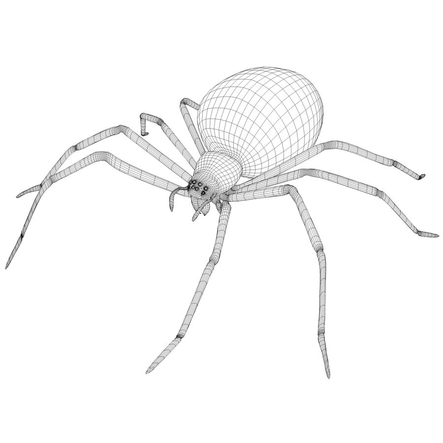 black widow royalty-free 3d model - Preview no. 6
