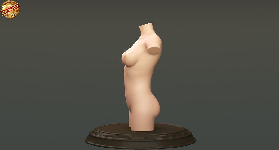 Female Torso royalty-free 3d model - Preview no. 9