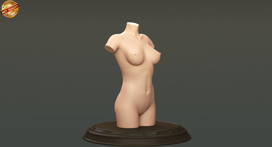 Female Torso royalty-free 3d model - Preview no. 4