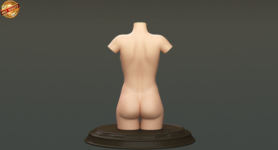 Female Torso royalty-free 3d model - Preview no. 7